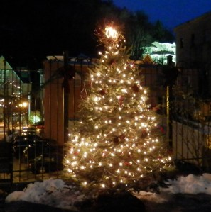 Race Street Park Christmas Tree